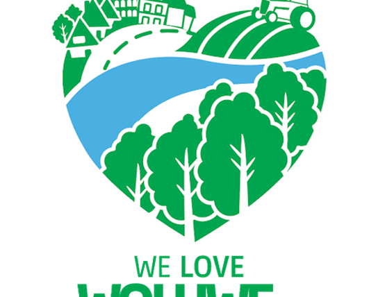 logo we love woluwe